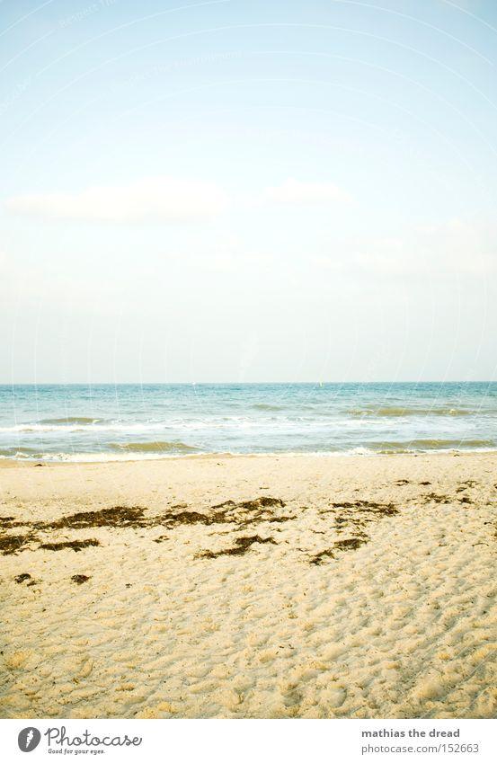Nature Water Beautiful Sky Ocean Blue Summer Beach Vacation & Travel Relaxation Sand Air Waves Footprint Algae Tracks
