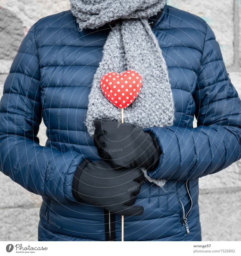 Human being Woman Blue White Red Adults Love Feminine Gray 45 - 60 years Heart Female senior Jacket Infatuation Valentine's Day Scarf