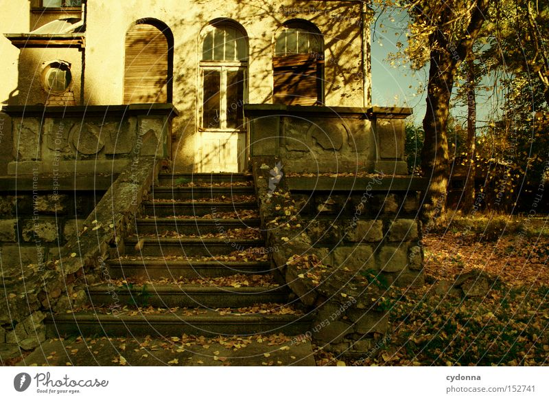 Sun House (Residential Structure) Loneliness Autumn Window Building Time Facade Stairs Living or residing Transience Derelict Nostalgia Villa Old fashioned Classical