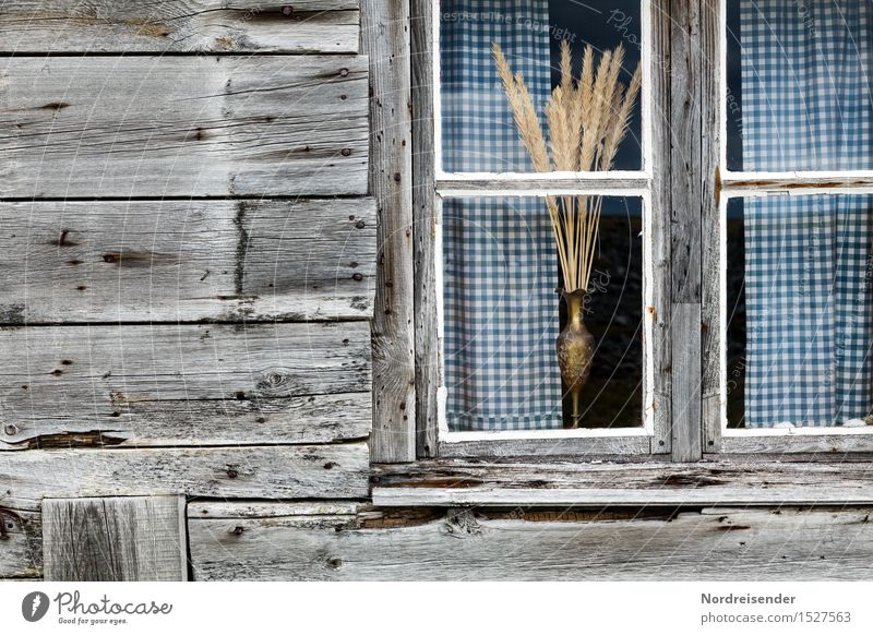 City Calm House (Residential Structure) Window Architecture Sadness Building Wood Moody Facade Living or residing Glass Retro Poverty Change Village