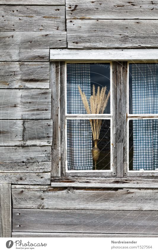 Loneliness Calm House (Residential Structure) Window Architecture Senior citizen Natural Wood Time Moody Facade Living or residing Decoration Authentic Transience Friendliness