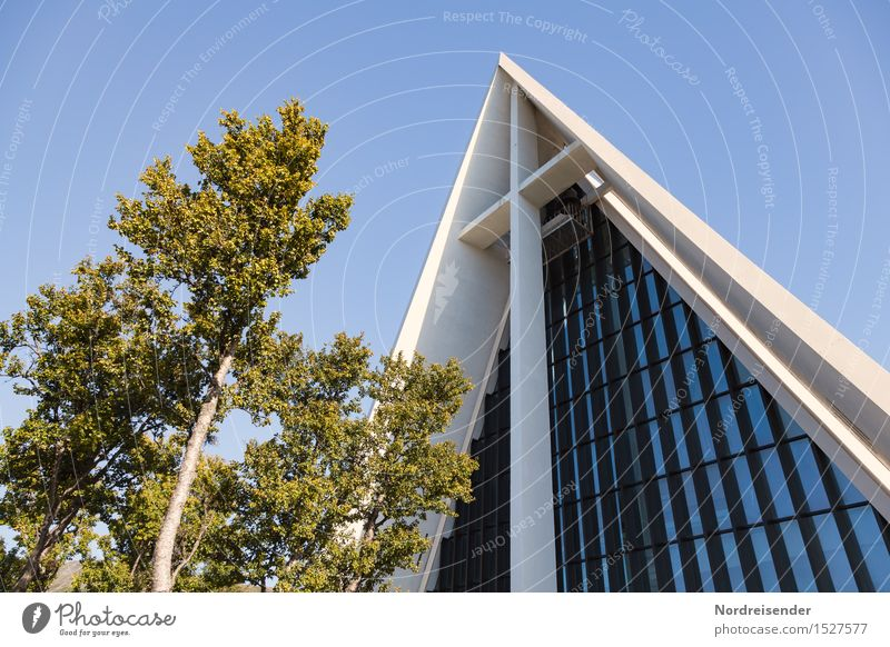 Vacation & Travel City Tree Architecture Religion and faith Building Facade Elegant Modern Glass Church Concrete Culture Beautiful weather Friendliness