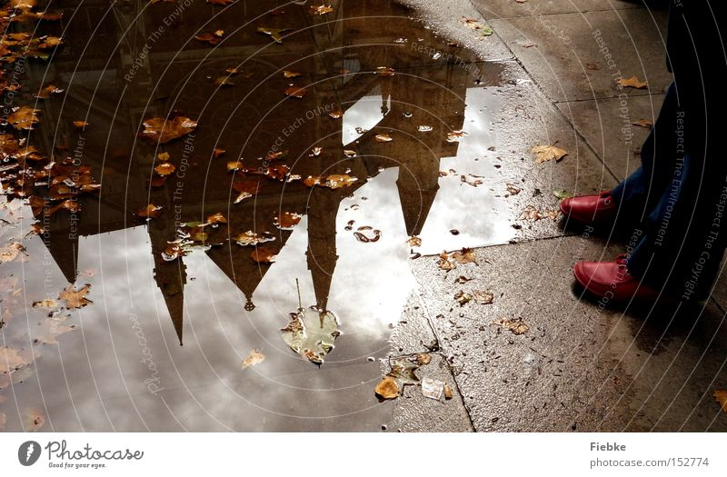 In the mirror of the past London England Puddle Water Reflection Mirror Footwear Feet Legs Red Floor covering Ground Leaf Autumn Westminster Abbey