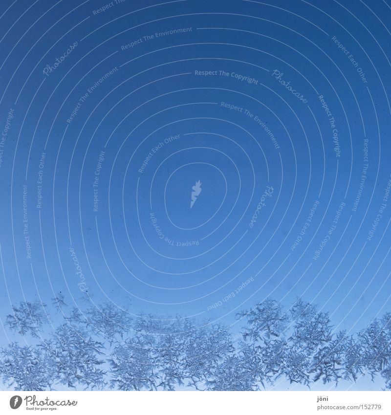 Beautiful Blue Winter Cold Window Ice Fresh Star (Symbol) Frost Fantastic Bizarre Frostwork