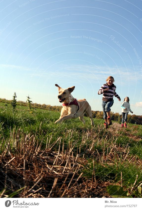 Child Dog Joy Animal Freedom Movement Friendship Walking Running To go for a walk Sporting event Human being Mammal Pet Dog racing Golden Retriever