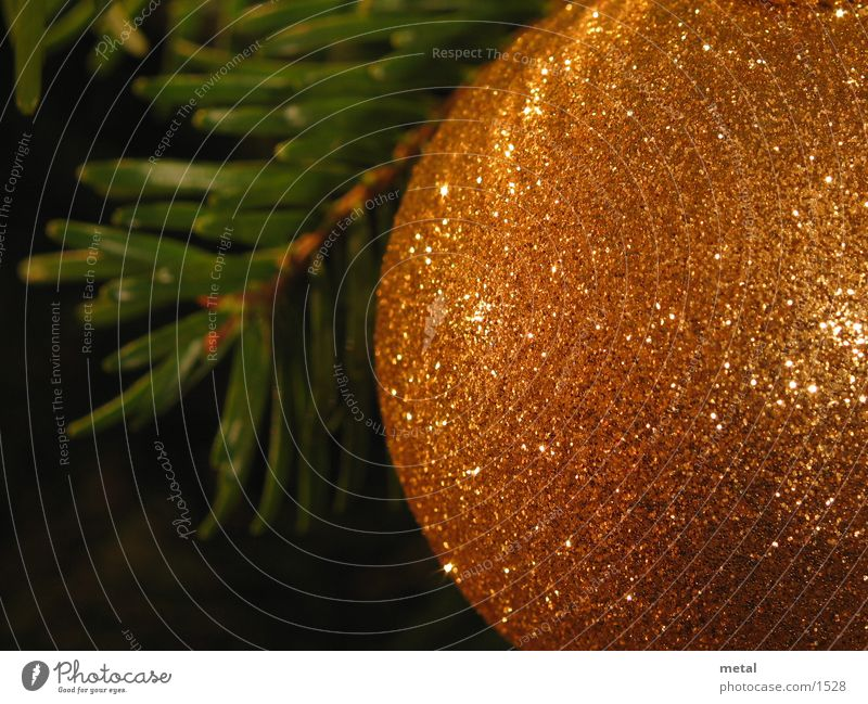 Christmas bauble Glitter Ball Living or residing Christmas & Advent Macro (Extreme close-up) Orange Close-up Fir needle