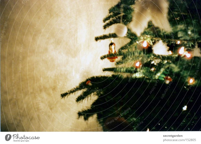 christmas with a geisha Lomography Christmas & Advent Jewellery Geisha Wall (building) Room Green Coniferous trees Sphere Pensive Fairy lights Blur Living room