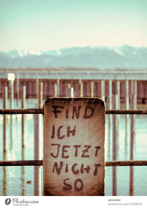 tingling Youth culture Subculture Elements Water Sky Winter Ice Frost Alps Mountain Lakeside Lake Constance Characters Graffiti Joy Cold Communicate Whimsical