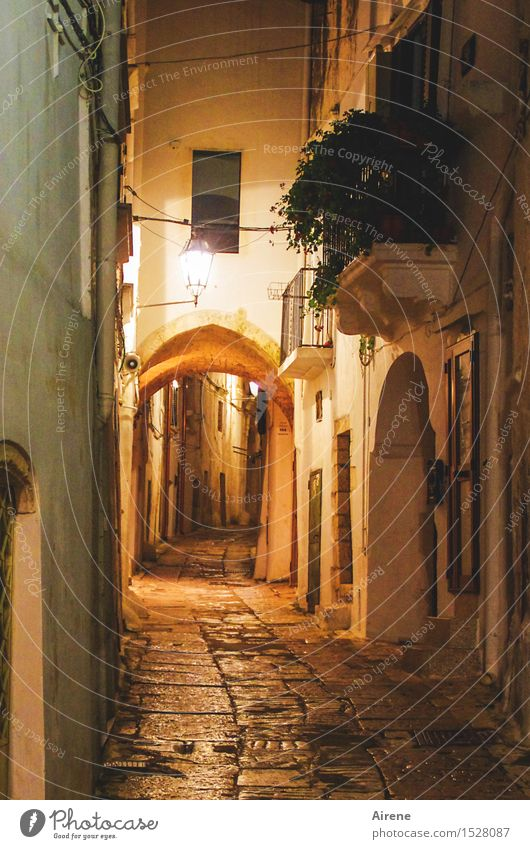 Night piece deserted Italy Apulia Southern Europe Small Town Old town Gate Wall (barrier) Wall (building) Facade Balcony Archway Street Alley Lamp Lantern