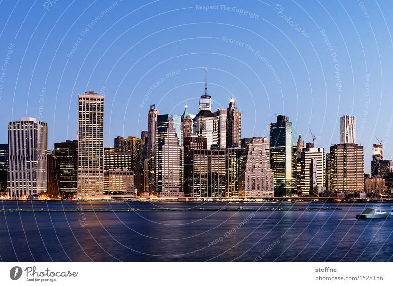 City Freedom City life High-rise Esthetic USA Skyline Landmark Downtown Americas Manhattan New York City East River
