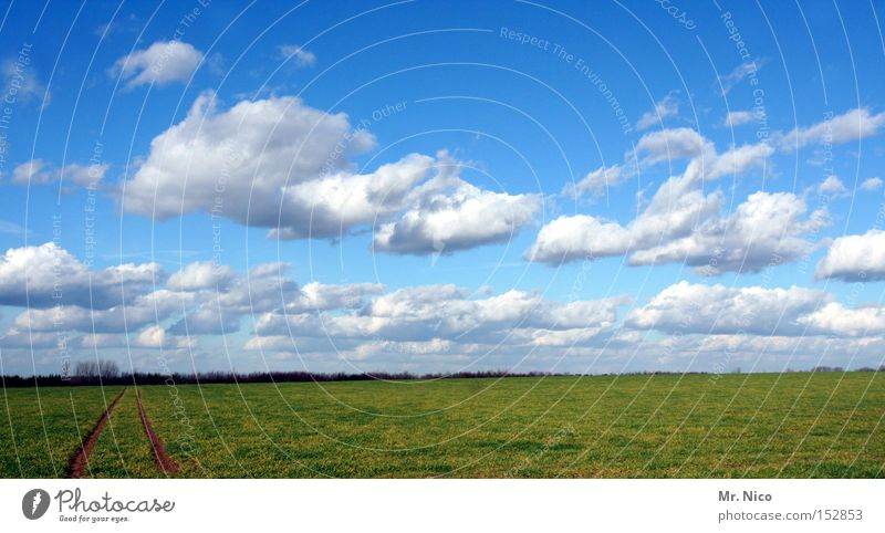 cloud track Sky Clouds Blue Weather Field Tracks Landscape Horizon Green Nature Germany Floor covering