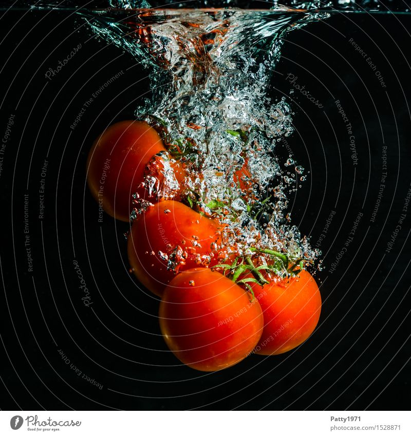 tomatoes Vegetable Tomato Organic produce Vegetarian diet Diet Drinking water Healthy Eating Fresh Delicious Wet Natural Green Red To enjoy Nutrition Splash
