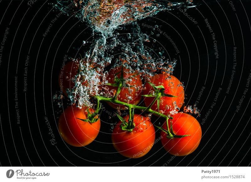tomatoes Vegetable Tomato Organic produce Vegetarian diet Diet Drinking water Healthy Eating Fresh Delicious Wet Natural Green Red To enjoy Nutrition Water