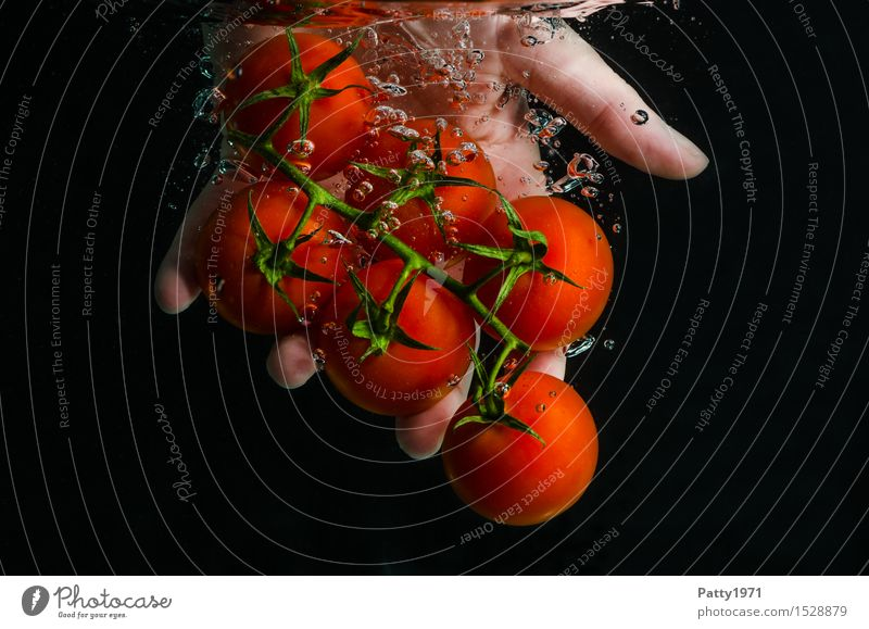 tomatoes Food Vegetable Tomato Organic produce Vegetarian diet Diet Drinking water Healthy Eating Hand Fingers Fresh Delicious Wet Natural Green Red To enjoy