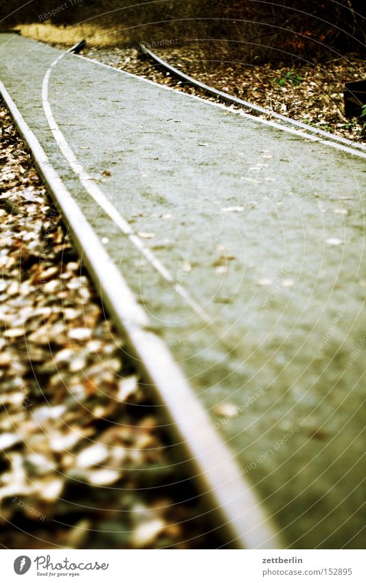 Autumn Railroad tracks Derelict Direction Train station Curve Difference Hip & trendy Switch Turn off Switchyard
