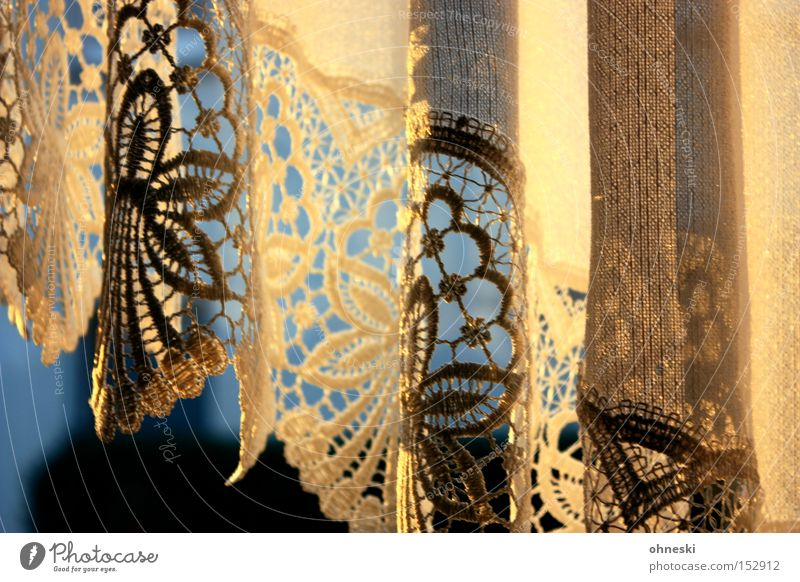 Evening light in mother's curtain Curtain Drape Lace Light Evening sun Shadow Gold Blue Winter Cold Window Cozy Comfortable Warmth Living room Decoration Detail