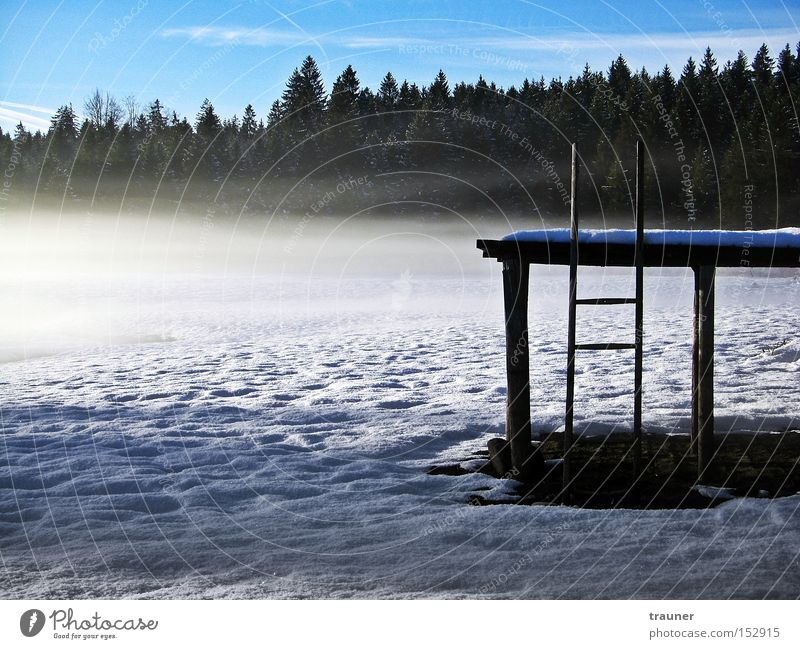 Where is the water? Lake Footbridge Snow Ice Fog Forest Sky Bad weather Eerie Loneliness Cold Winter Dark