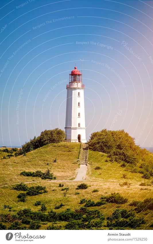 Lighthouse Hiddensee Vacation & Travel Tourism Trip Far-off places Summer Summer vacation Island Nature Landscape Cloudless sky Beautiful weather Tree Hill