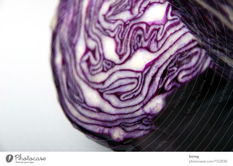 Wedding dress remains wedding dress Red cabbage Cabbage Detail Partially visible Vegetable Structures and shapes Wood grain Lettuce Side dish Raw Healthy