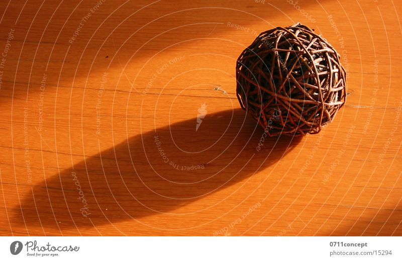 ball of branches Tree Natural product Rotate Steppe Branchage Sphere Nature Coil