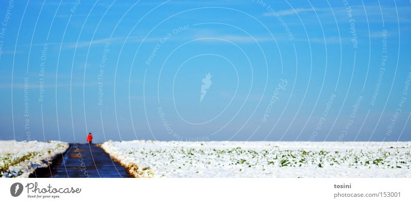 Human being Sky White Blue Winter Clouds Far-off places Snow Landscape Field Horizon To go for a walk