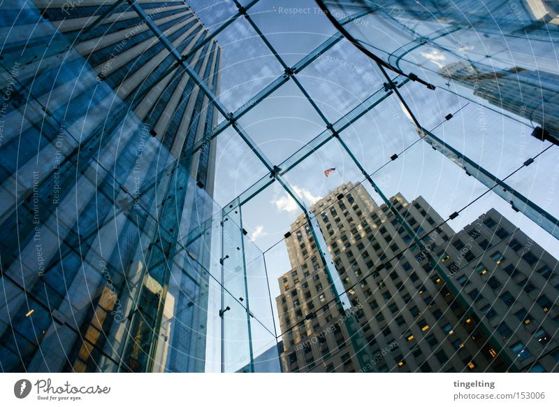From bottom to top Manhattan New York City Glass roof Facade High-rise Americas Blue Sky Graphic