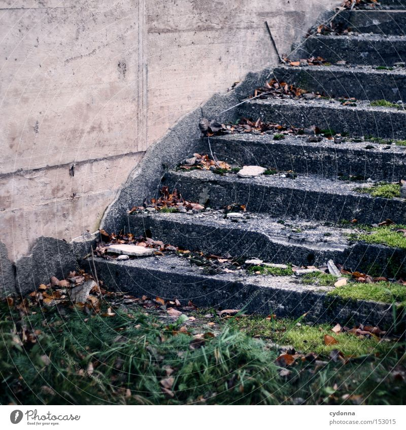 Climbing stairs Stairs Old Destruction Force of nature Time Transience Environment Broken Objective Function Moss Nature Derelict To break (something) Line