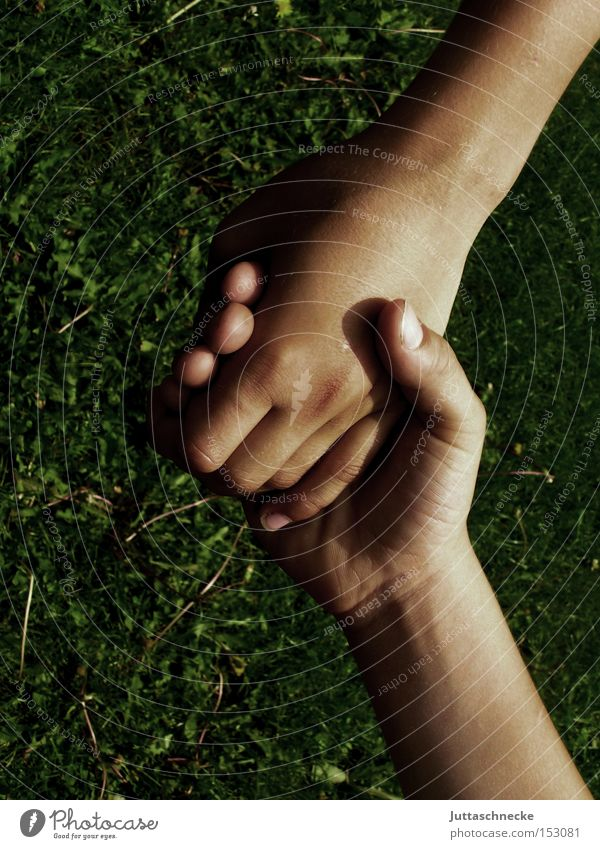 greater than Hand To hold on Handshake Hold hands Fingers Communicate Trust Child friendship together Juttas snail
