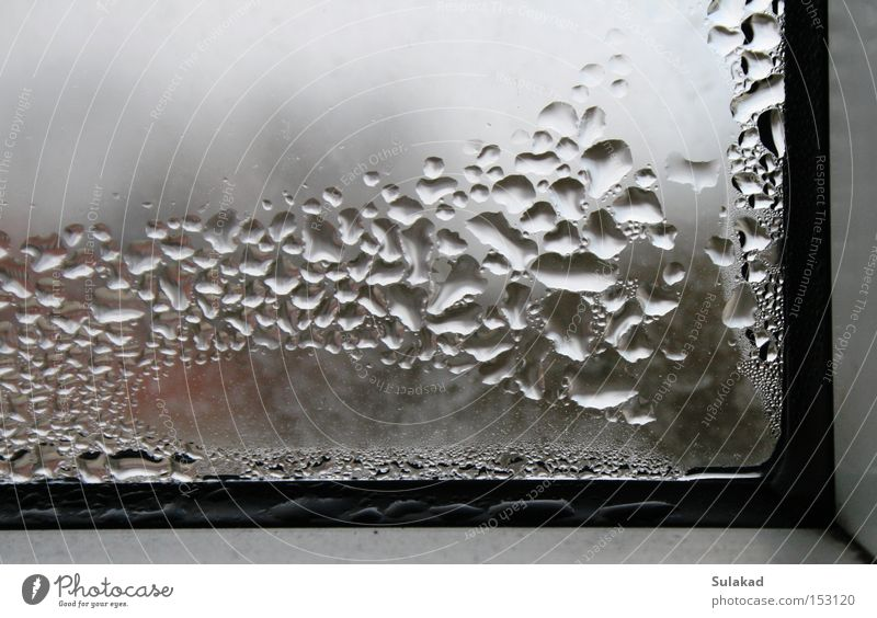 window corner Water Window Dirty Cold Window pane Frozen Dew Bubble Corner Glass At right angles Reflection Drops of water Wet Deserted Window frame