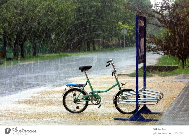 rain wheel Rain Wet Pillar Street Puddle Summer Autumn Thunder and lightning Folding bicycle Lanes & trails Tree Fresh Narrow Water Bicycle advertising board
