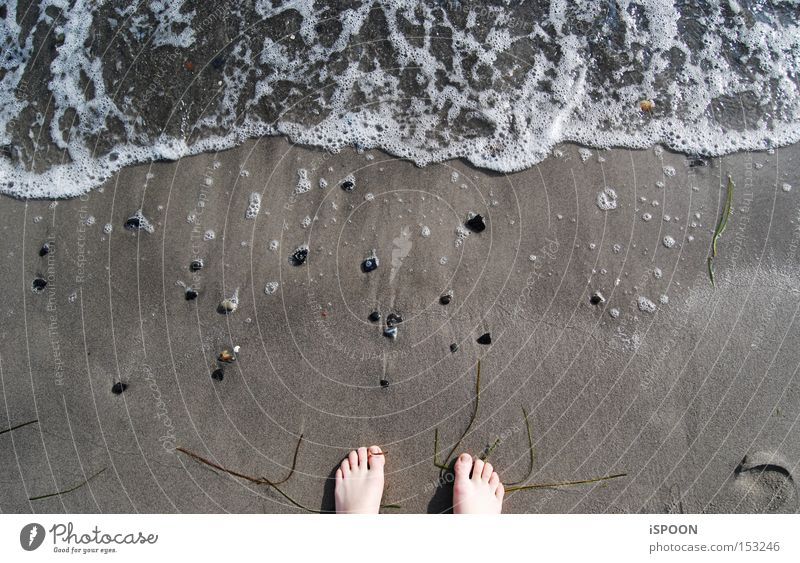 A Piede! Copenhagen Feet Beach Ocean Water Denmark Toes Sand North Sea Waves Foam Barefoot
