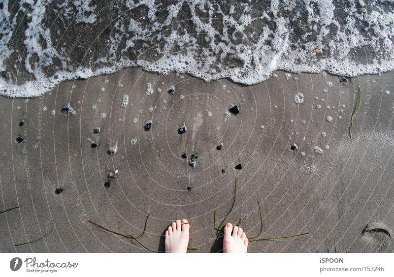 Water Ocean Beach Feet Sand Waves North Sea Toes Foam Denmark Copenhagen
