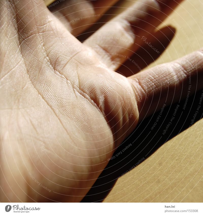 Hand Emotions Power Skin Fingers Force Catch Craft (trade) Door handle Senses Grasp Parts of body Palm of the hand