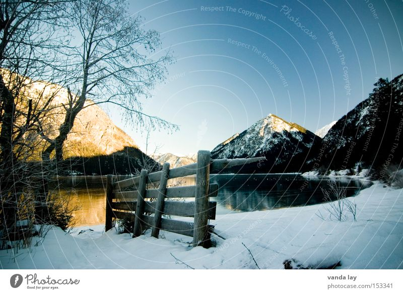 Lake Heiterwang I Mountain Alps Austrian Alps Water Winter Snow Ice Fence Tree Moody Loneliness Cold Mirror Federal State of Tyrol Landscape Beautiful weather
