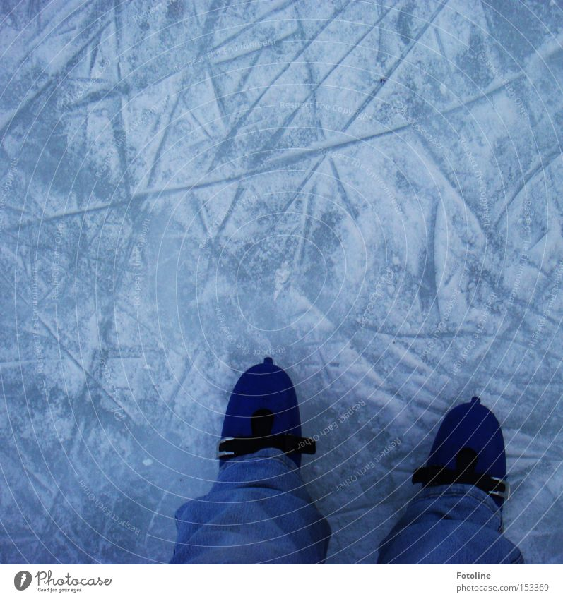 Joy Winter Sports Cold Snow Playing Ice Walking Running sports Frost Tracks Runner Winter sports Ice-skates Frozen surface
