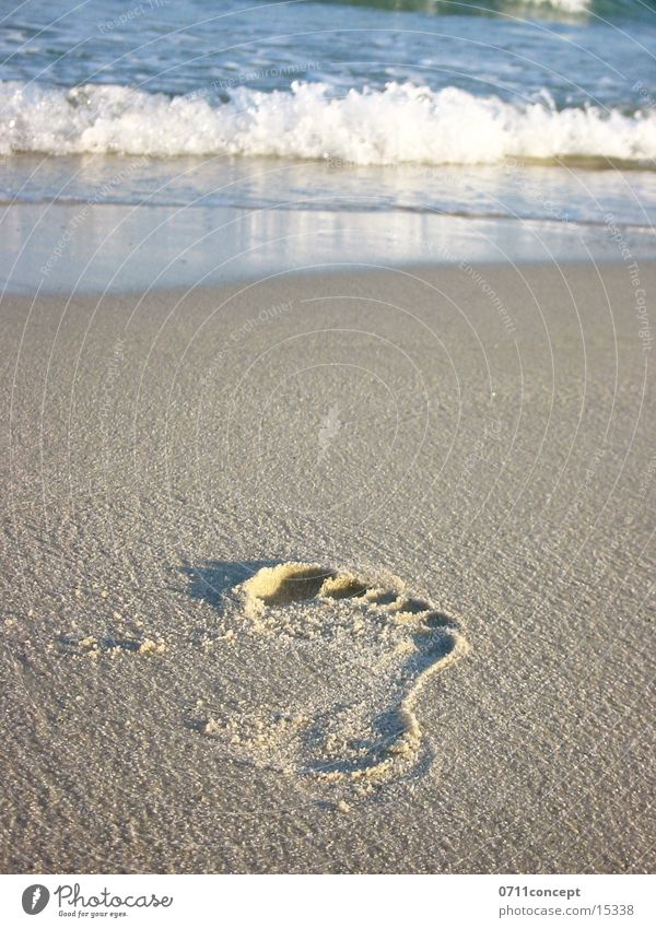 Towards the Sea Footprint Ocean To go for a walk Relaxation Tracks Sand Barefoot