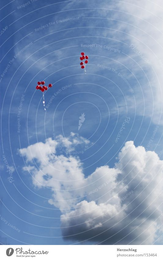 Sky Blue Clouds Far-off places Happy Contentment Flying Tall Free Aviation Balloon Desire Matrimony