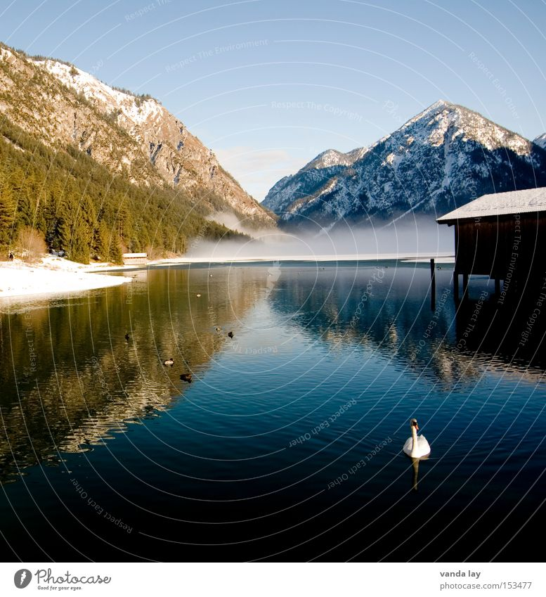 Sky Nature Water Winter Landscape Cold Snow Mountain Lake Large Peace Mirror Swan Light Boathouse