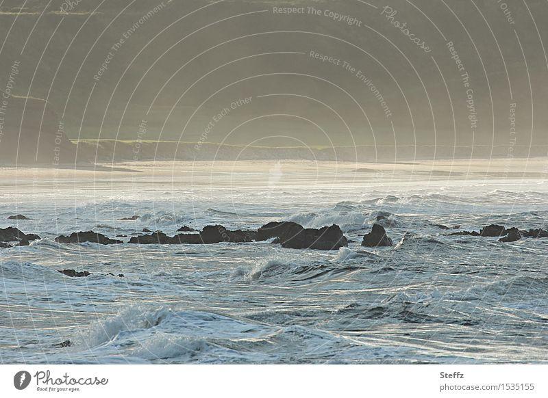 Nature Beautiful Ocean Landscape Beach Coast Moody Fog Waves Romance Bay North Sea Flare Afternoon Shaft of light Illuminating