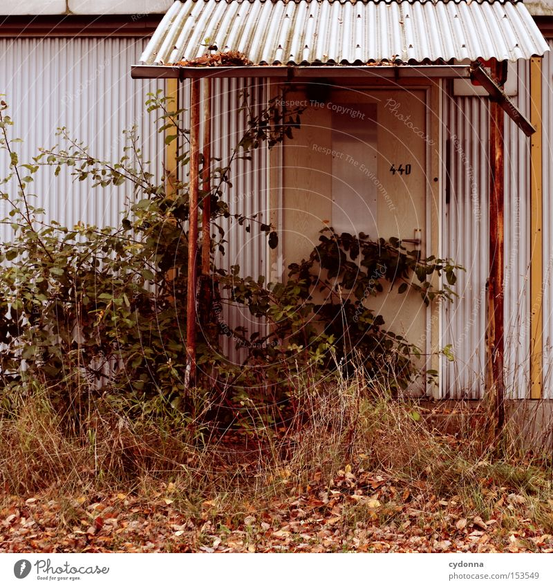 Nature House (Residential Structure) Loneliness Door Time Retro Transience Derelict Past Entrance GDR Nostalgia Old fashioned Vacancy Unused Nostalgia for former East Germany