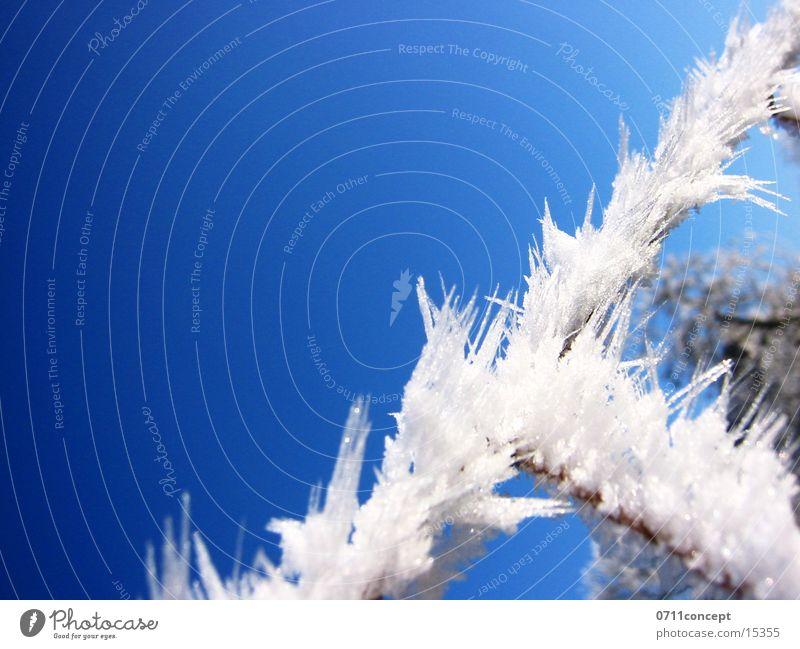 Vacation & Travel Blue Winter Cold Graffiti Snow Horizon Ice Empty Dangerous Point Threat Seasons Frozen Under Adjectives