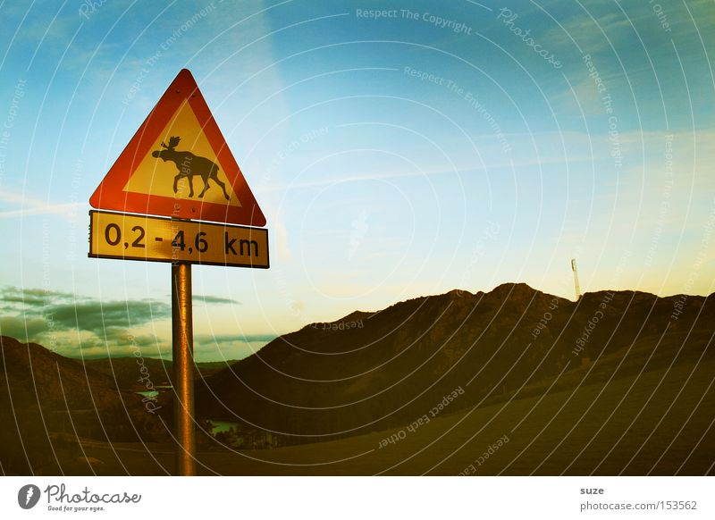 Sky Nature Street Mountain Landscape Environment Signs and labeling Safety Signage Traffic infrastructure Scandinavia Warning label Norway Clue Traffic lane Road sign