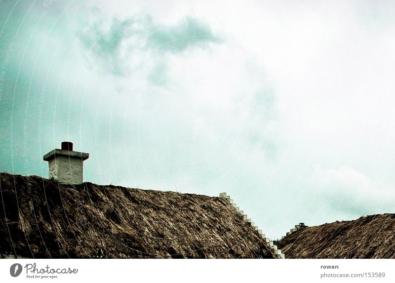 roof landscape Reet roof Grass Roof Organic Old fashioned Ireland Marsh grass
