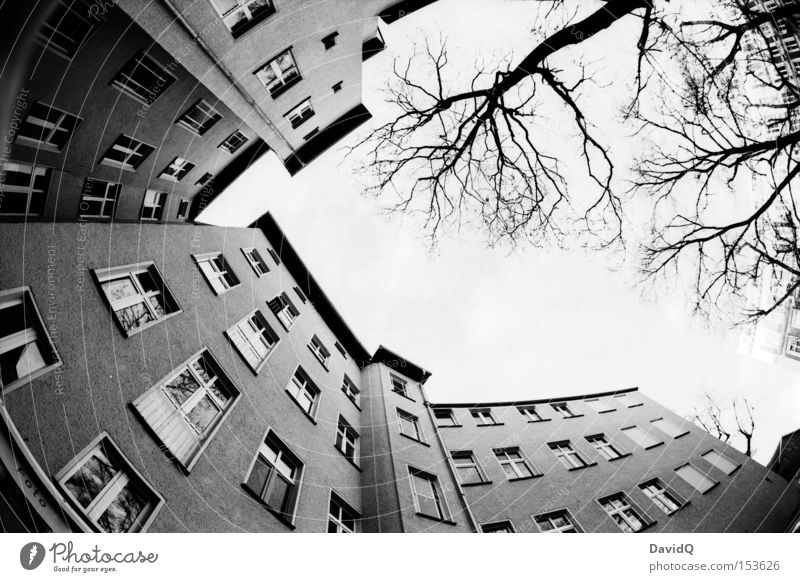Sky Tree House (Residential Structure) Window Facade Corner Backyard Block Town house (City: Block of flats) Old building Black & white photo