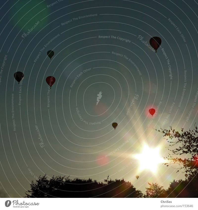 into the sun Hot Air Balloon Warmth Sunset Sporting event Summer Driving Foxhunting Playing Sky Montgolfiade Flying Münster aaseewiesen sky ChrISISIS