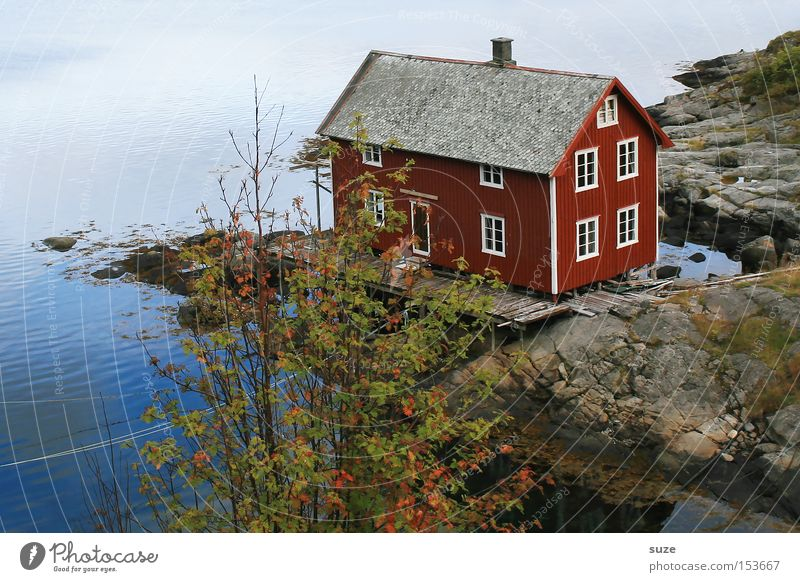 dream house Relaxation Calm Ocean Environment Nature Landscape Elements Rock Coast Fjord House (Residential Structure) Hut Red Loneliness Idyll Norway