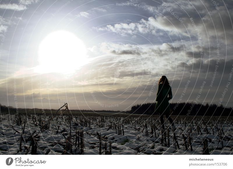 White Sun Clouds Snow Bright Horizon Germany Contentment Field Back Future Hope Longing Goodbye Lust Require