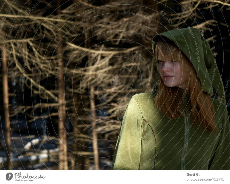 Girl hoods Woman Costume Hooded (clothing) Velvet Long-haired Forest Elf Fairy Fir tree Branch Hiding place Nature forestry forest spirit Look back
