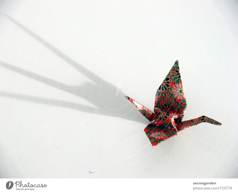 with greasy fingers cranes handcrafted Leisure and hobbies Craft (trade) Art Animal Bird Paper Flying Bright Kitsch White Crane Asia Japan Folded Dramatic