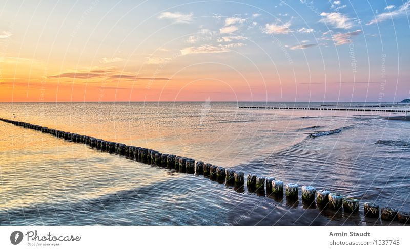 groynes Life Harmonious Well-being Contentment Senses Relaxation Calm Vacation & Travel Summer vacation Beach Ocean Island Waves Nature Landscape Water Sunrise